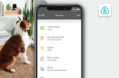 Dog sitting looking out window with mobile view and Homelife app on screen