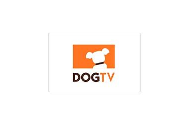 Education center DogTV