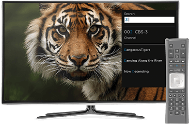 Image: Cox TV Contour 2 Smart Search